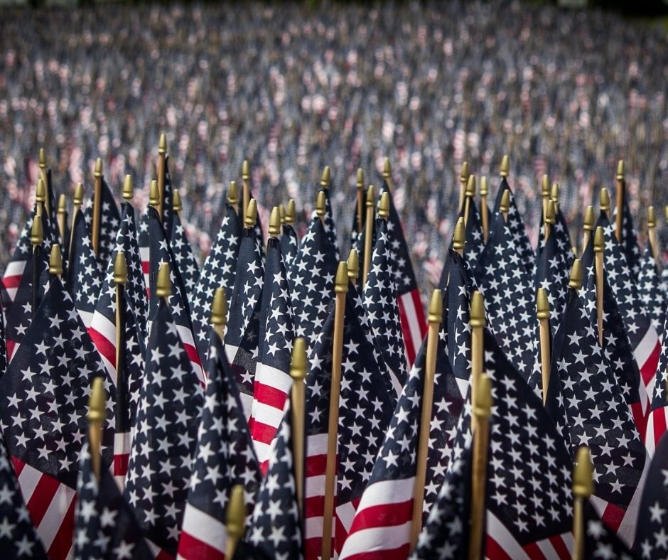 Image of thousands of small American flags all closely packed together.